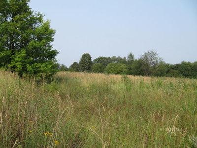 Предлагается к продаже в собственность земельные участки в г. Жуковский