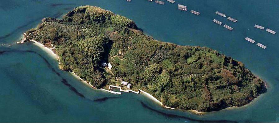 Японский остров