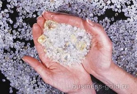 Предлагается уникальный шанс выйти на рынок добычи, покупки и экспорта алмазов в Демократической Республике Конго , а также Бельгии (алмазная биржа в Антверпене) либо простой покупке алмазов.