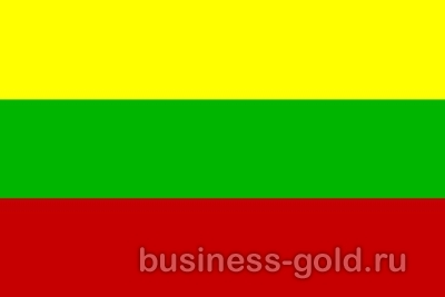 Помогаем в короткие сроки оформить ВНЖ в Литве через создание фирмы на основе намерений вести хозяйственную деятельность в стране.