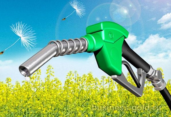 Участие в производстве и продаже биодизеля в Португалии